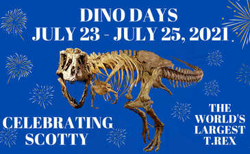 Dino Days  Slide